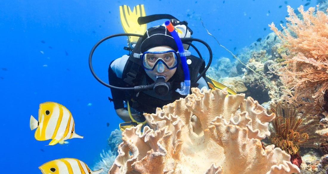 Picture for category Scuba Diving and Snorkelling