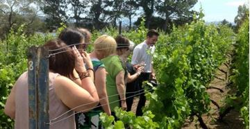 Picture of Half Day Food and Wine Tour – Hobart