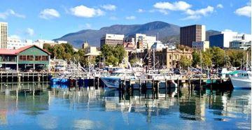 Picture of Half Day Wilderness, Wildlife & Wine Experience Hobart