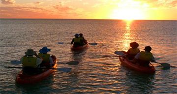 Picture of Turtle Kayak for 1 Adult - Broome