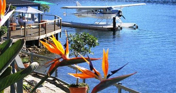 Picture of Cottage Point Restaurant - Sydney
