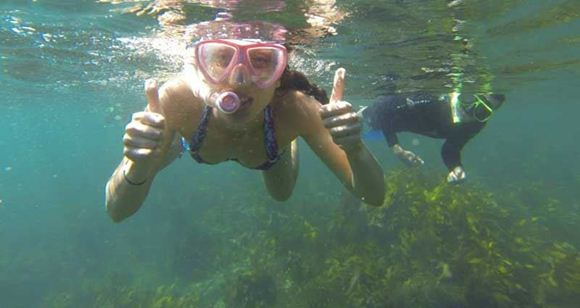 Picture of Manly Snorkelling Tour for Two