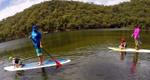 Picture of Sydney Stand Up Paddle Boarding Safari - Family Pass