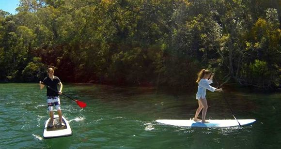 Picture of Sydney Stand Up Paddle Boarding Safari For Two