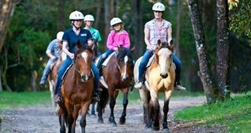 Picture of Horse Riding and Abseiling Adventure - Glenworth Valley