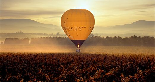 Hot Air Balloon Flight - Yarra Valley, Child (1 Hour)