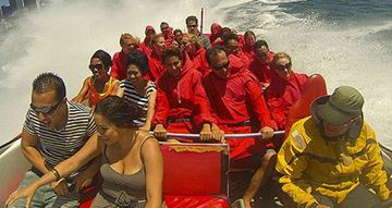 Picture of Jet Boat Ride Sydney Harbour for Families