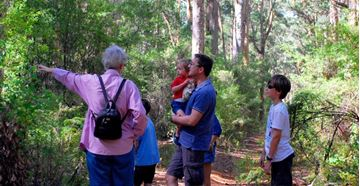 Picture of Beach & Forest Eco Adventure Family Pack - WA