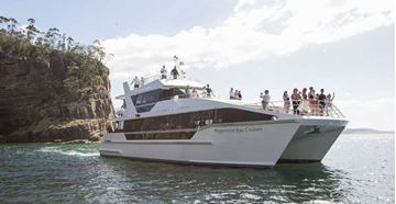 Picture of Peppermint Bay Cruise for 1 Child - Hobart