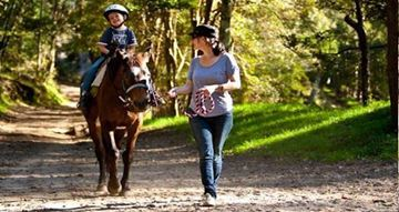 Picture of Guided Horse Riding Adventure -  Glenworth Valley