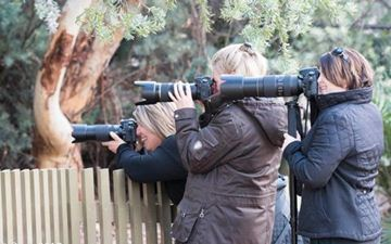 Picture of Digital Photography Workshop- Canberra (1 Day)