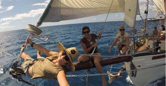 Picture of Derwent Hunter Day Trip - Whitsundays (Adult)