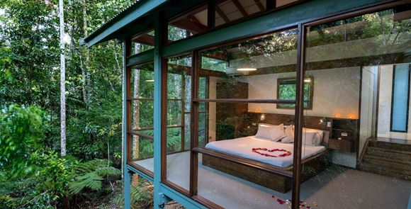 Picture of Romantic Two Night Package  - Rainforest Retreat