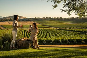 Picture for category Winery Dining Packages