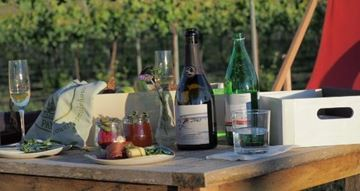 Picture of Picnic & Vineyard Tour Canberra